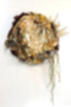 Fecundity Clarissa Callesen