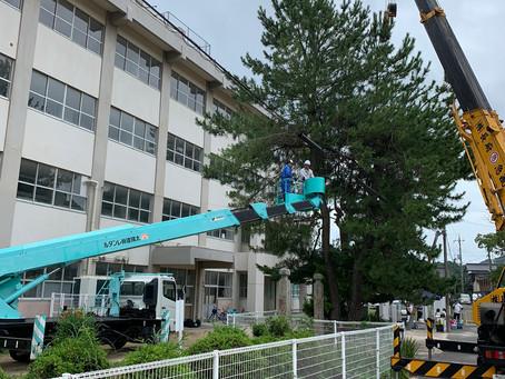 豊浦小学校整備