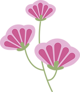 Pink Flower.png