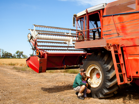 'Excellent' farming opportunity for Wedderburn and Wallup