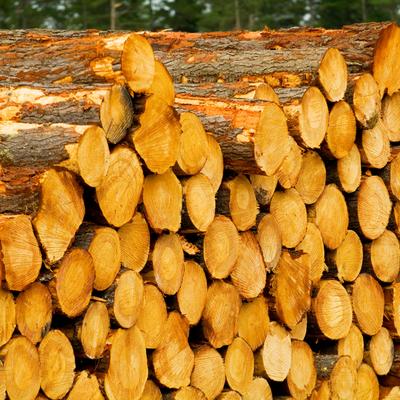 Basham praises deal on KI timber