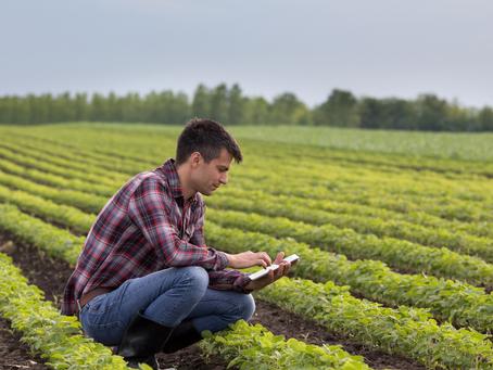 Applications open for Young Farmer Mentor Program