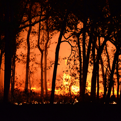 CFS urges people to prepare for fire danger season