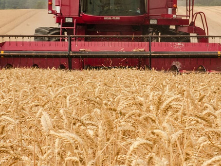 Birchip Cropping Group to host Harvester Forums