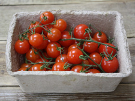 cherry-tomatoes-riverford.jpg