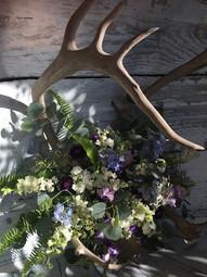Caribou Arbor Flowers