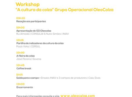 Workshop – A cultura da Colza