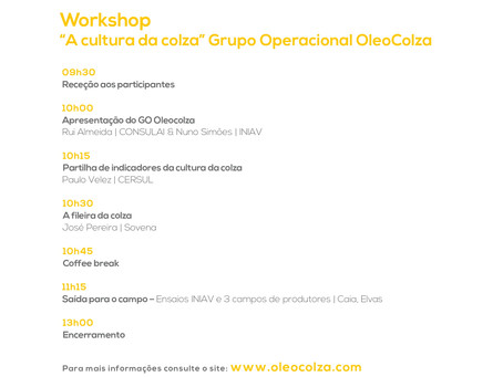 Workshop – A cultura da Colza