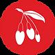 Logo_02.1.png