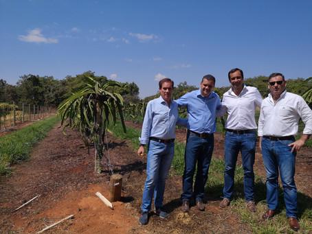 Missão técnica a Cerrados, Brasil