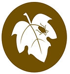 Logotipo_FDCONTROLO.jpg