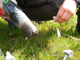 Continuação Trabalho de Campo | Quantificação de Serviços dos Ecossistemas - Ciclo de Nutrientes