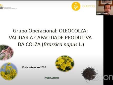 Nuno Simões (INIAV) - Validar a Capacidade Produtiva da Colza