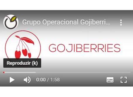 Consórcio Gojiberries   Participação no Congresso Frutos 2020