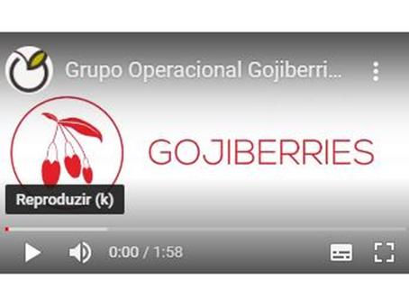Consórcio Gojiberries | Participação no Congresso Frutos 2020