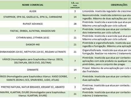 Insecticidas Homologados para Cigarrinha da Flavescência Dourada