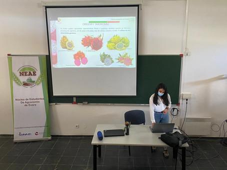 O GO Fruta Dragão marcou presença nas Terças Agronómicas da Universidade de Évora