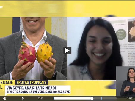 """Investigadora Ana Rita Trindade participa no programa da RTP """"SOCIEDADE CIVIL"""" – Frutas Tropicais"""