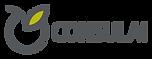 Logo_Consulai_sem_assinatura.png