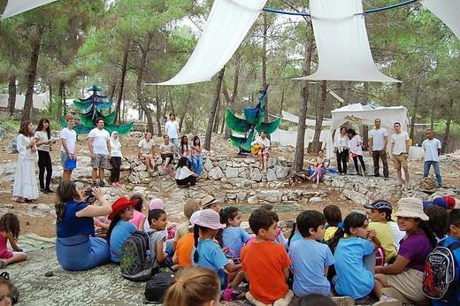 Ecological Festival