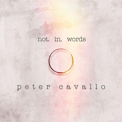 Not in Words2.jpg