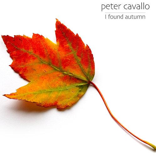 I Found Autumn String Quartet scores ONLY