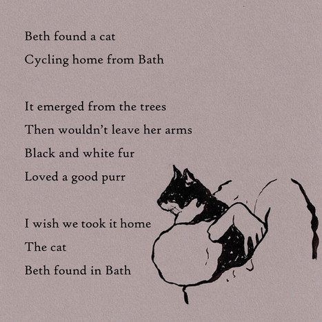 beth found a cat