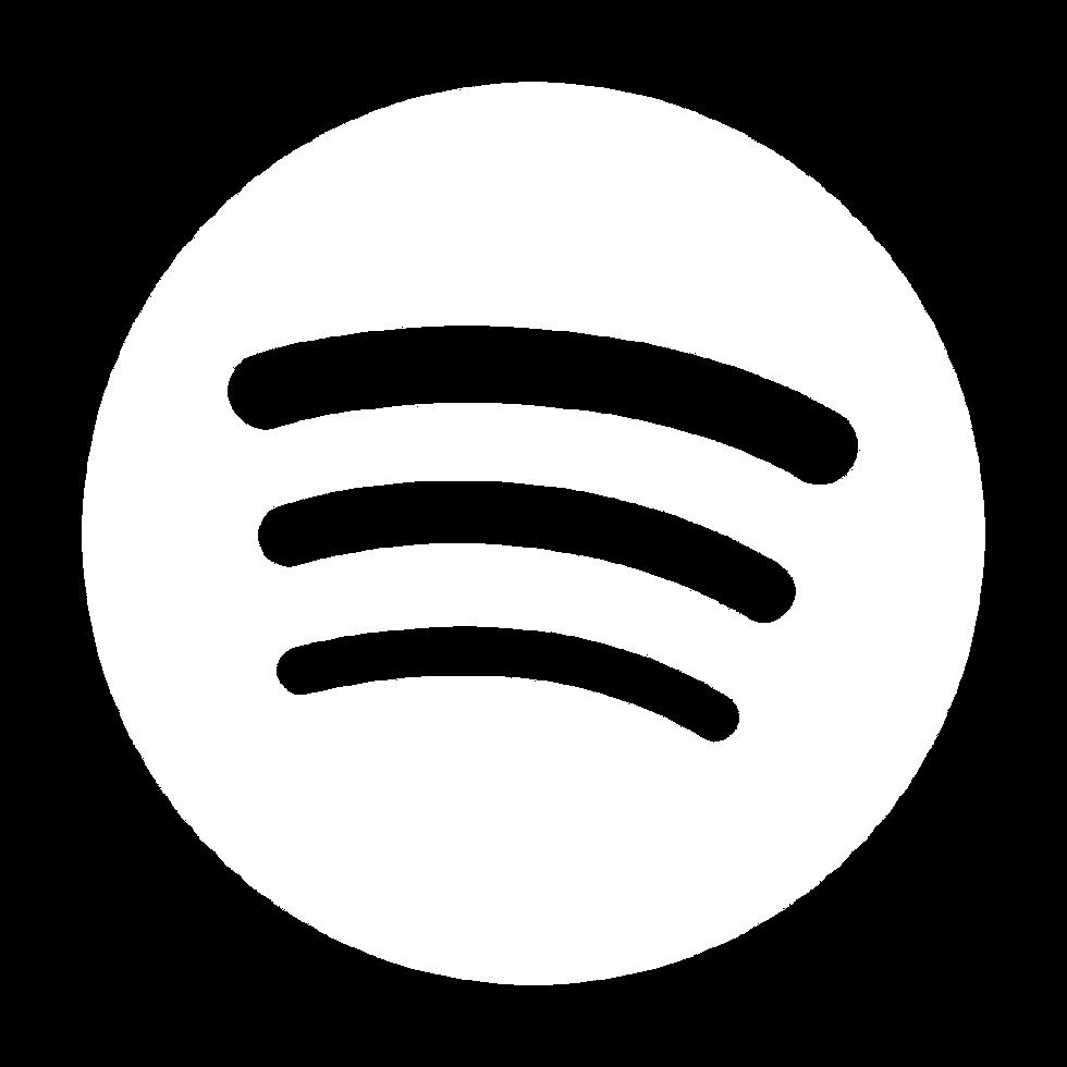Spotify logo bucato 4