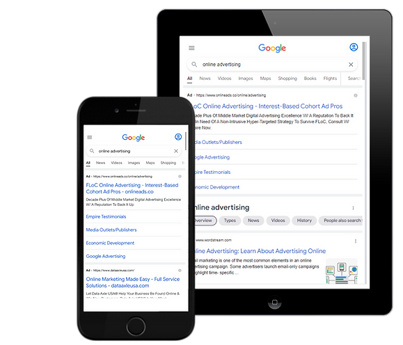 Google Online Ads Settings Example