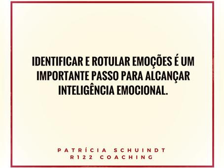 Como controlar emoções - Inteligência Emocional, por Patrícia Schuindt