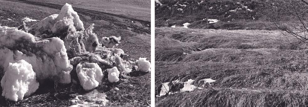 Snow Heap and Matted Grass