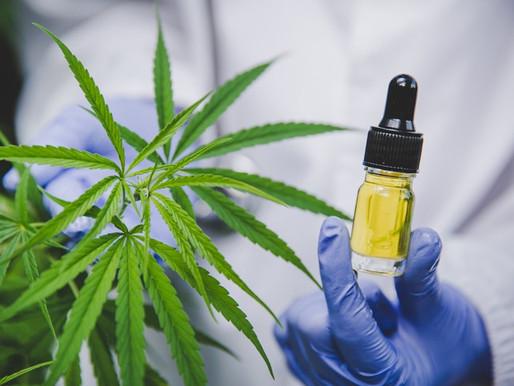 Tendencia: Cosméticos con Cannabis