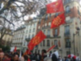 IEO MANIF 30 11 19 PARIS 2.jpg