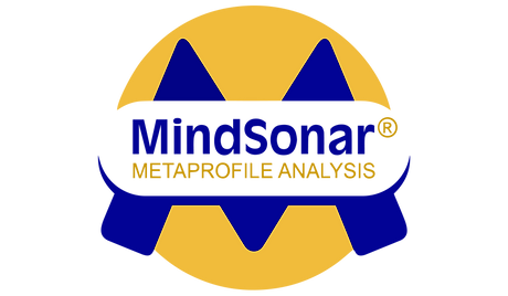 MSlogo_high_resolution.png