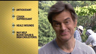 Dr. Oz's Honey Harvest