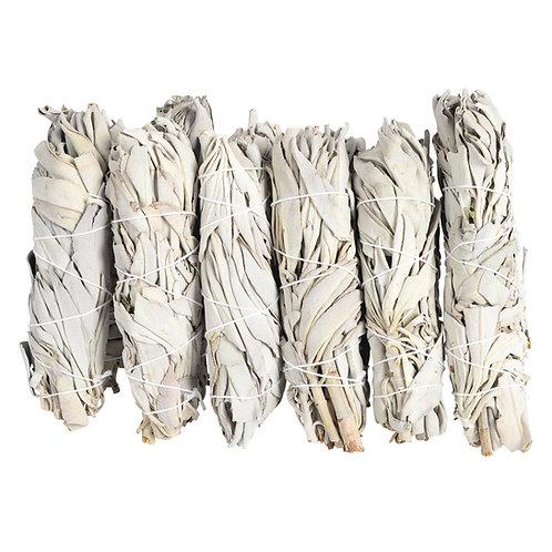 California White Sage Smudge Sticks (Bulk)