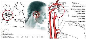 Дизфункция височно-нижнечелюстной сустава