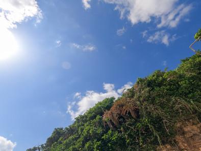 沖永良部島の自然