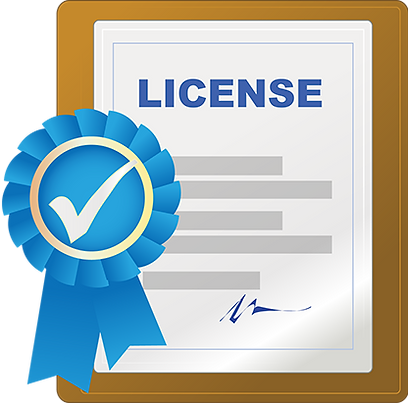 Business License Software-City County So