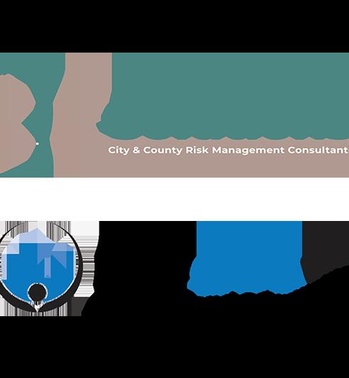 Government Software Strategic Partnershi