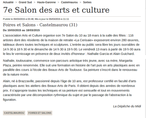 Salon des arts Castelmaurou
