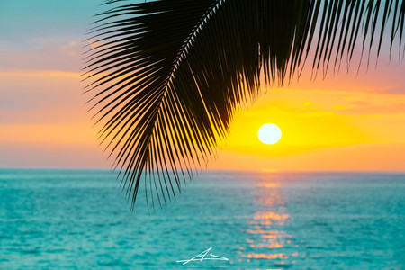 ハワイ島コナサンセット-12.jpg