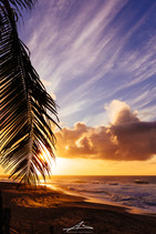 Northshore Sunset,Oahu.jpg