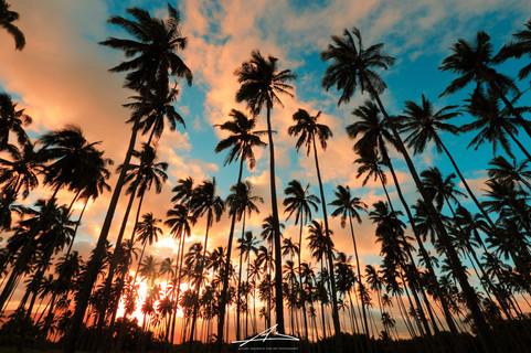 Kapaa, Kauai-2.jpg