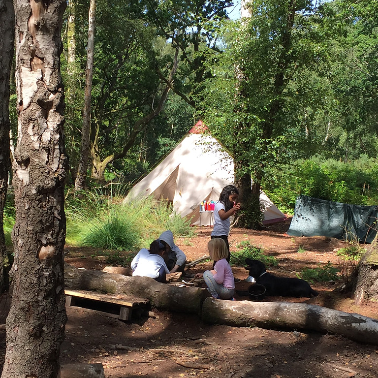 Summer Camp at Ampfield Woods - 26th July - 6th August 2021