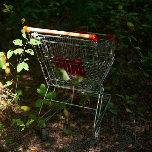 Conscious Consumerism: Changing the Way We Think About Sustainability