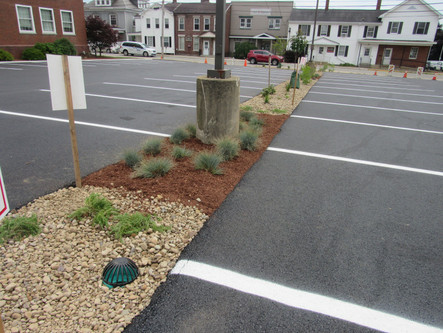 8th Street Lot - New Update!