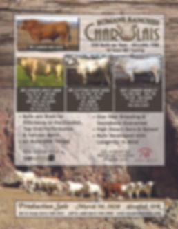 Romans Ranches Charolais.jpg