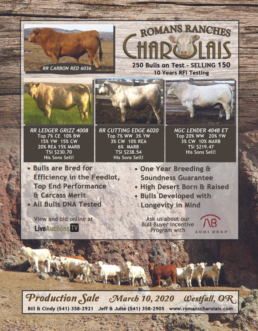 Romans Ranches Charolais.jpg