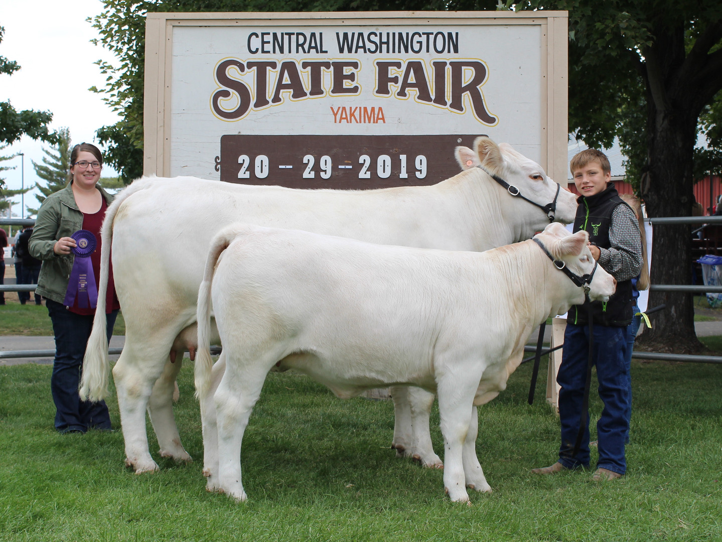 Junior Show Grand Champion Cow Calf Pair